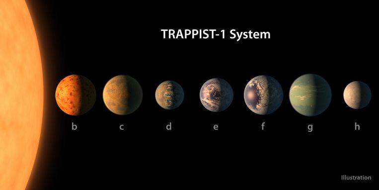 De zeven planeten van dwergster Trappist-1. De middelste, 'e', lijkt het meest op de aarde. Beeld Nasa/EPA