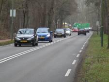 Rechtszaak tegen bomenkap Birkhoven voor rondweg