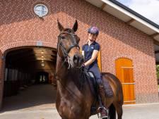 'De rel rond het paard Hermès is een nieuw voorbeeld van de onbuigzaamheid van sportbonden'