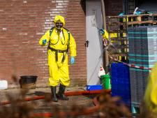 Nieuwsoverzicht | Uitbraak vogelgriep op pluimveebedrijf Sint-Oedenrode - Oliediefstal uit pijplijn dwars door Brabant