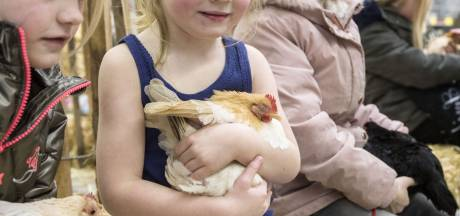 Kleindierenshow Oneto Enschede in het nauw door verplaatsing van Nederlands grootste dierenparade