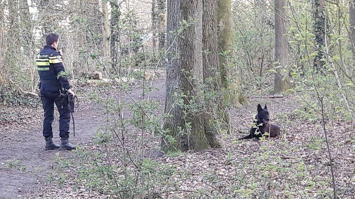 Politiehond Max en zijn hondengeleider aan het werk in het bos achter de kinderboerderij aan de Uitslagsweg in Hengelo. Er heeft een incident plaatsgevonden met een minderjarig meisje.