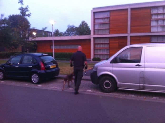 Honden worden ingezet om geld te zoeken. Foto Bas Vermeer/BD