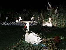 Septemberfeest Borculo zonder tent en muziek: '1,5 meter is gauw uit het zicht na drie biertjes'