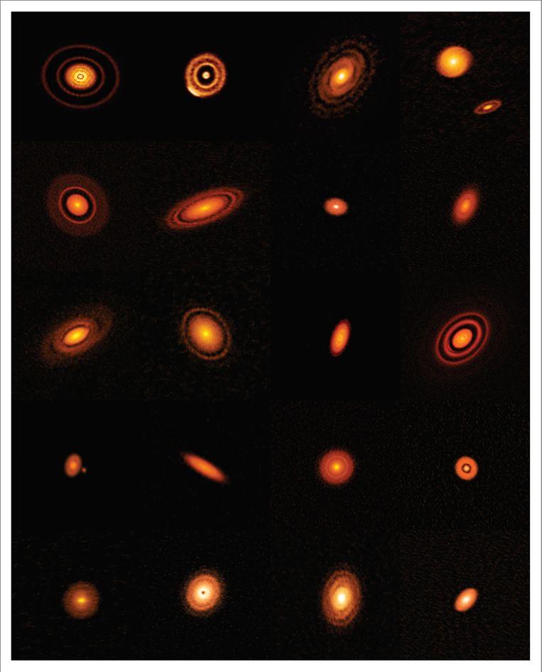 De twintig planeet-stelsels-in-wording, vastgelegd door het ALMA-observatorium in de woestijn van Chili. Beeld NRAO/AUI/NSF