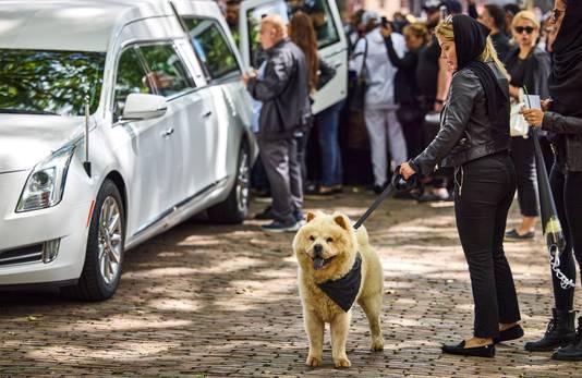 Zijn hond Esco bij de uitvaart van Wisam