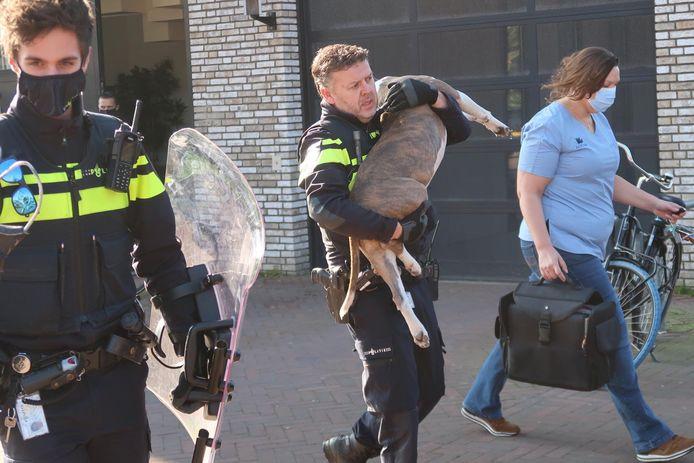 Man en vrouw gebeten door agressieve hond.