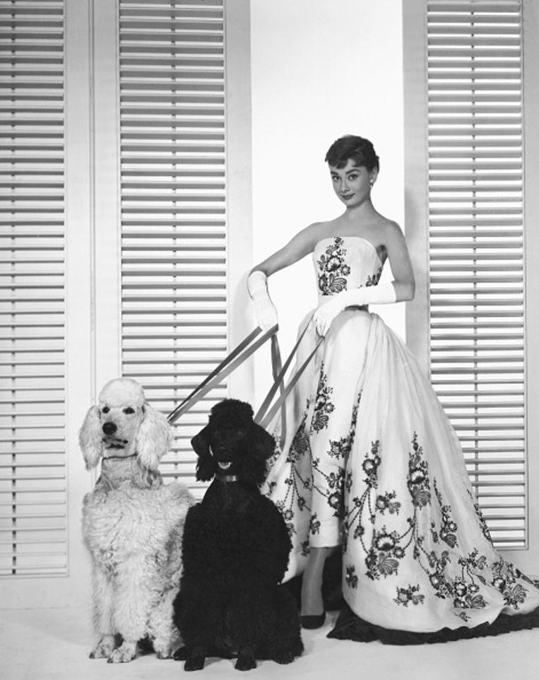 Neem een voorbeeld aan de witte avondhandschoenen die Audrey Hepburn droeg bij de witte Givenchy-jurk in Sabrina. Beeld Corbis via Getty Images