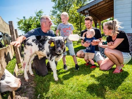 Van 20 naar 100 procent Nederland; luxe vakantie bij de boer in Groene Hart