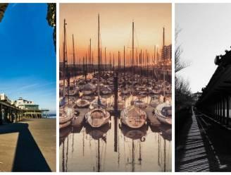 10 Instagram-foto's die bewijzen dat Tom Waes ongelijk heeft over Blankenberge
