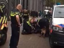 Rotterdam 'bijthoofdstad': in geen enkele andere stad zet een politiehond zo vaak zijn tanden in een verdachte