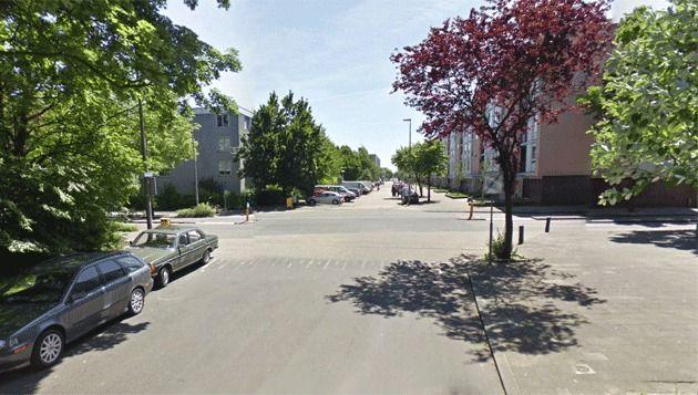 De Trumanlaan ter hoogte van de Van Heuven. © Google Streetview