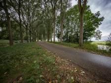 Dijk in Zwartenbergse polder hoger en breder om kans op 'verzopen polders' te beperken