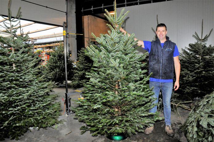 Jos Wouters kan een kerstboom in een mum van tijd kaarsrecht zetten