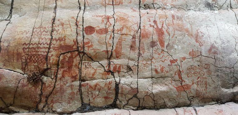 Nieuw ontdekte prehistorische rotskunst in de Serranía La Lindosa in Colombia. Beeld José Iriarte