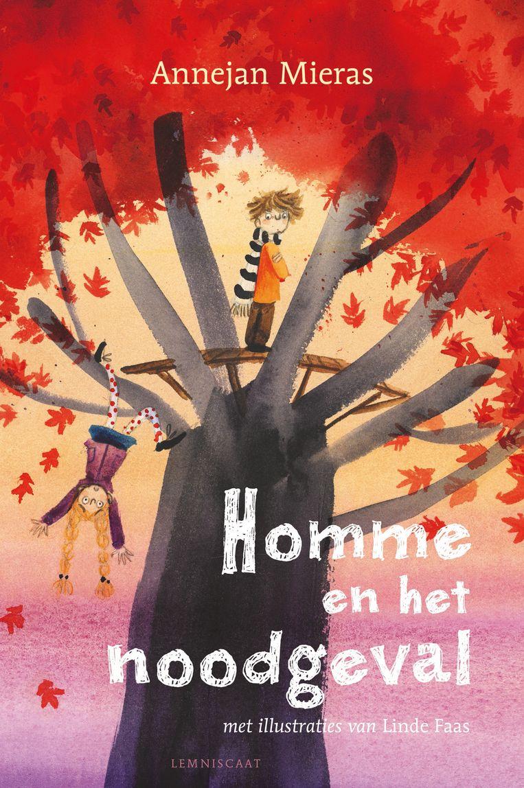 Homme en het noodgeval, Annejan Mieras & Linde Faas, Lemniscaat, €14,95, 9+. Beeld