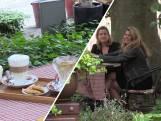 Vriendinnen testen terrasjes voor de lol: 'Op zoek naar de echte parels'