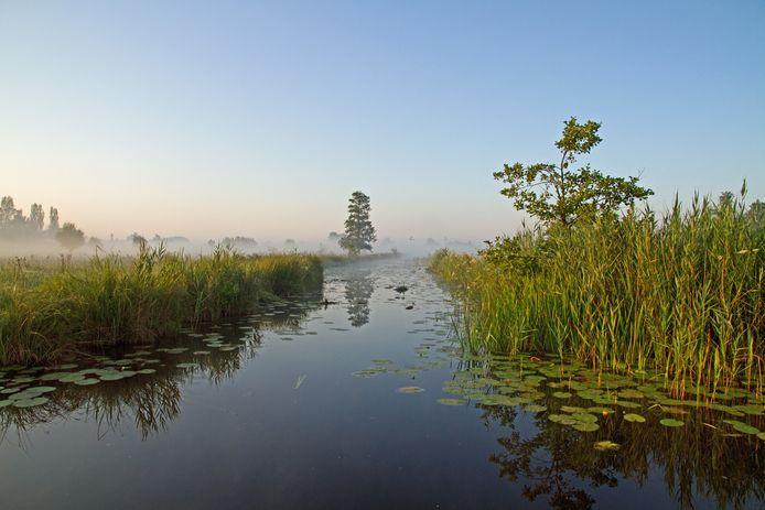 De Nieuwkoopse Plassen (2000 hectare) is een Europees beschermd natuurgebied.