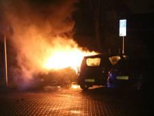 Elektrische auto gaat in vlammen op in Wateringen