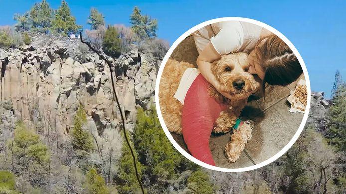 Alors qu'il se trouvait dans un parc du centre de l'Arizona, Simba a sauté par-dessus ce muret et a fait une chute de 60 mètres.