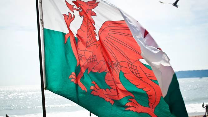 Petitie eist dat draak op Welshe vlag mannelijk lid krijgt