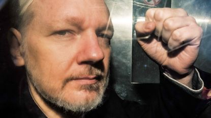 Pas in 2020 besluit over uitlevering Assange