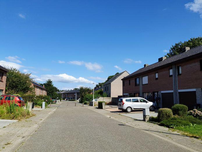 De schietpartij vond plaats in de Rodenbachlaan.
