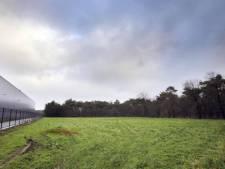 Brouwhuis uit weer zorgen over BZOB-bos