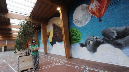 Muurschildering symboliseert metamorfose centrum