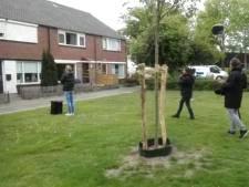 Enschedese wethouder 'gestalkt' door Sophie Hilbrand: 'Ik leg genoeg verantwoording af'