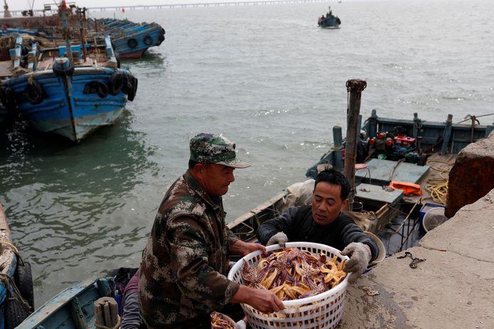 Vissers halen hun vangst binnen in de haven van Qingdao één dag na de botsing tussen de twee schepen.