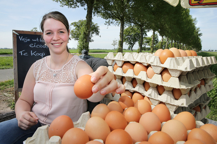 Sanne van der Kolk bij het eierverkooppunt langs het fietspad in Drongelen.