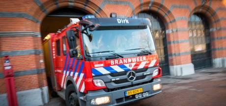 In korte tijd twee auto's uitgebrand in Papendrecht: 'Houden rekening met brandstichting'