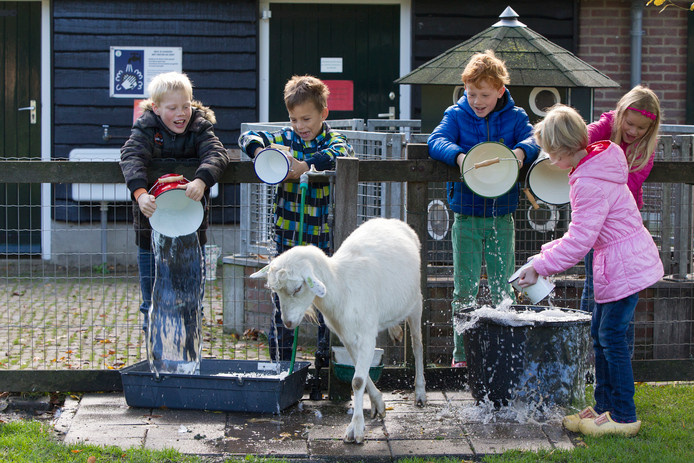 Kinderen proberen een van de dieren onstuimig van water te voorzien.