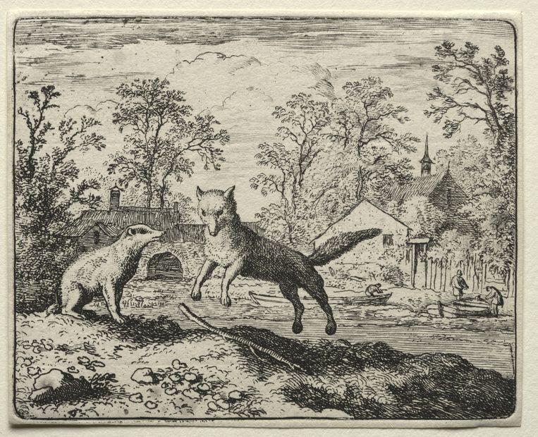Reinaart de vos biecht Grimbeert de das zijn misdaden op. Ets van Allart van Everdingen (1621-1675).  Beeld Sepia Times/Universal Images