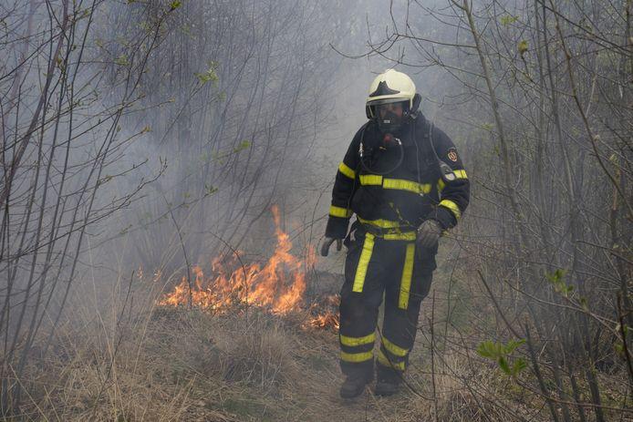 Bosbrand in Den Hout.