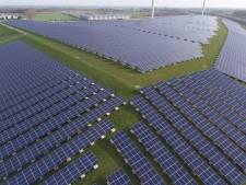 Prijzenoorlog bij de aanleg van zonneparken: 'Het moet veel zorgvuldiger'