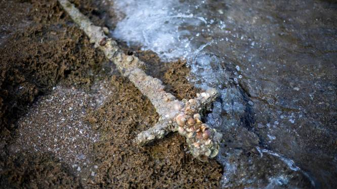 Amateurduiker doet zeldzame vondst in Israël: 900 jaar oud kruisvaarderszwaard