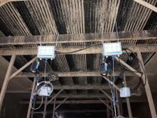 Proef bij varkensbedrijf: wordt boeren schoner en efficiënter door ammoniakuitstoot continu te meten?