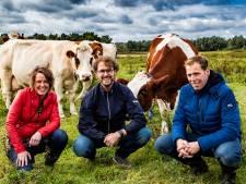 100.000 euro subsidie voor melkfabriek in Olst: 'In de winter rolt eerste pak melk van de band'