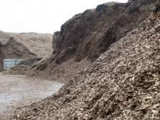 Gelderland geeft tegenstanders energiecentrales op biomassa gelijk met forse beperkingen