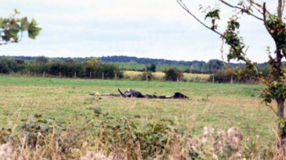 Vlaamse jongen (16) en instructeur (28) sterven bij vliegtuigcrash