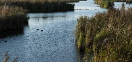 Kavelruil in Rijnstrangen bij Zevenaar: 'Grond is emotie. Het was vooral heel veel praten'