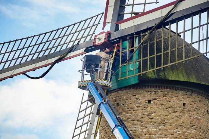 De wieken van de Kilsdonkse molen in Heeswijk-Dinther worden onderhanden genomen.