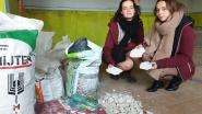 Na 10 jaar in beschimmelde lokalen: eindelijk nieuwbouw voor meisjesscouts Sint-Godelieve