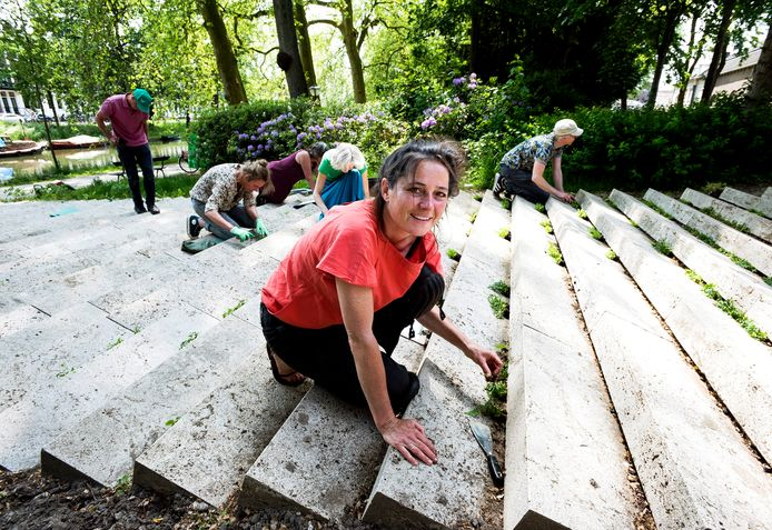 Kunstenaar Birthe Leemeijer, op de voorgrond, is bezig om samen met vrijwilligers nieuwe plantjes op de kunsttrap aan te brengen.