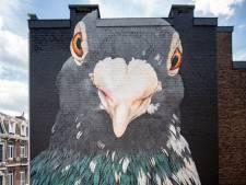 Deux nouvelles fresques font leur apparition en Cité Ardente