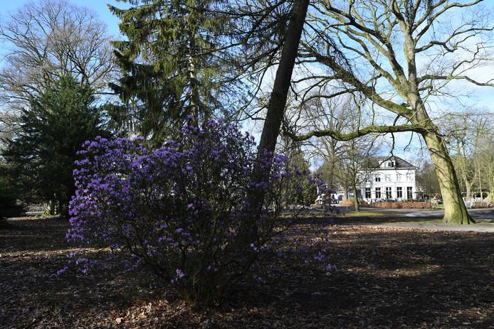 In de verte het prachtige landhuis op Lievensberg, waar momenteel een B&B in huist.