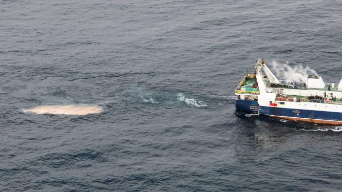 """""""Bevissing Antarctisch krill vormt ernstige bedreiging voor een van 's werelds laatste grote ongerepte natuurgebieden"""""""
