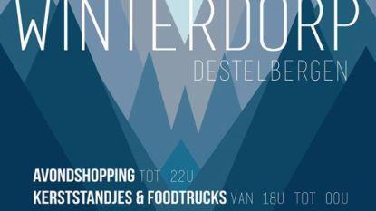 Winterdorp in Destelbergen en Kerstmarkt in Heusden